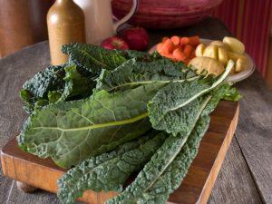 Diets to reverse diabetes. diabetes diet,